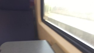 Risky ride in a dutch train without panties (PUBLIC PUSSY FLASHING)